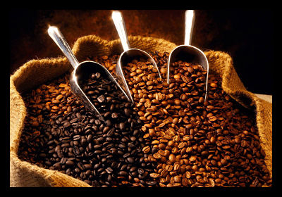 Uganda coffee exports jump 13 percent in November – UCDA